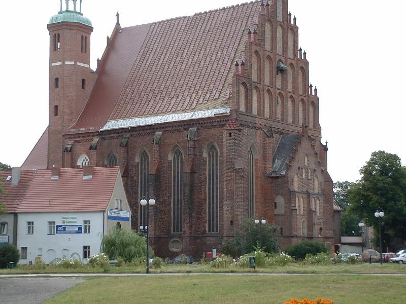 Katedra w Żarach