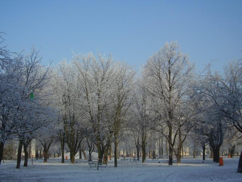 Park osiedlowy zimą