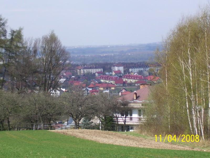 Dębica - panorama