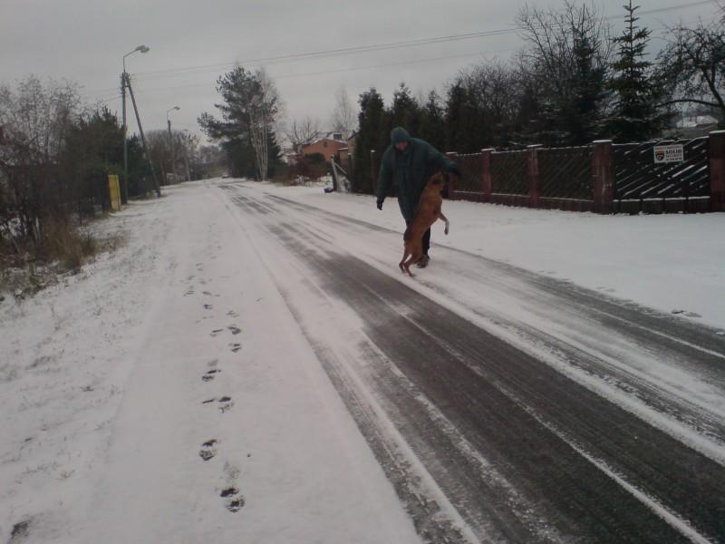 Pierwszy śnieg w Międzyborowie.
