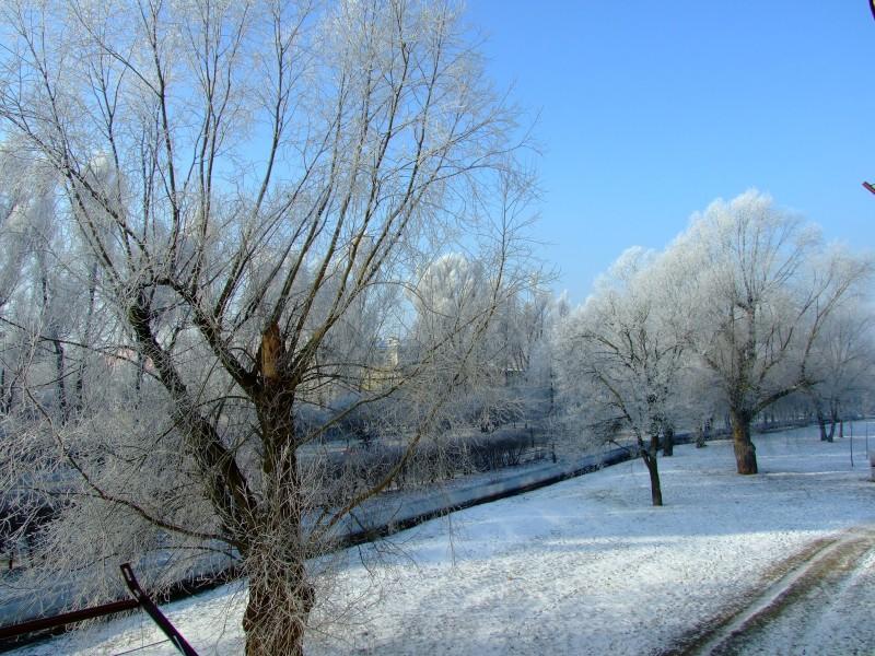 ul.Łódzka zimą