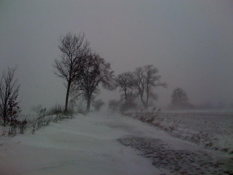 Zima na Kociewiu