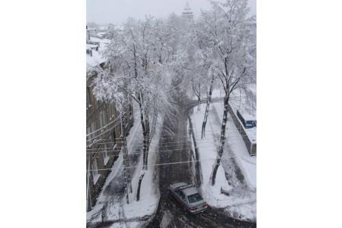 Zima  wiosną