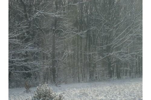 karczma Borowa zima