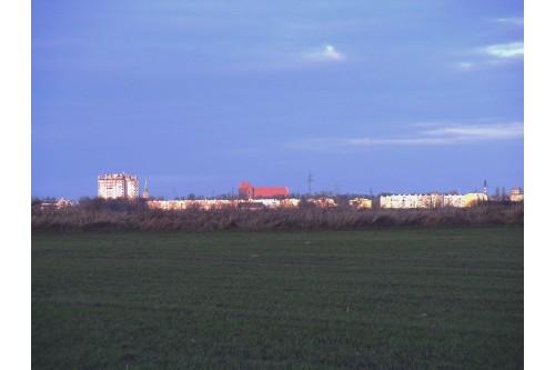 Brzeg - Panorama