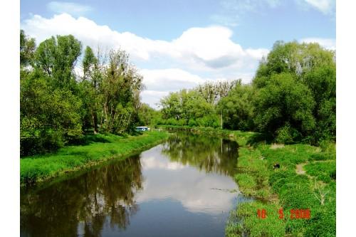 Wieprz - widok z mostu