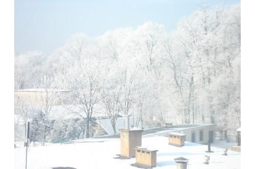 Park zimą - widok z akademika