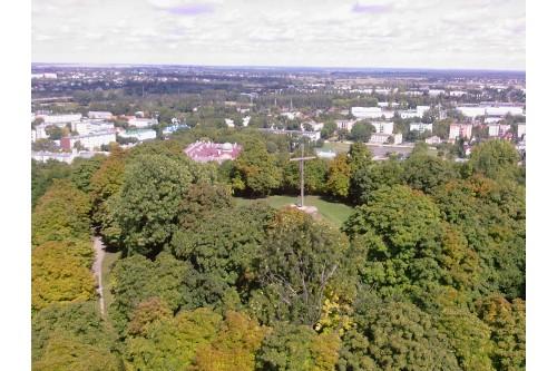 Widok z dzwonnicy