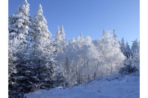 Pasmo gór Opawskich