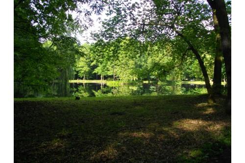 Park Żielona